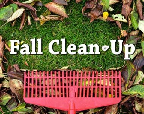 fall-clean-up_webevent-511x402-480x378