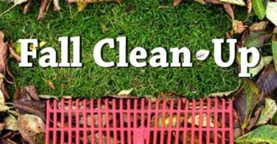 fall clean up 2019